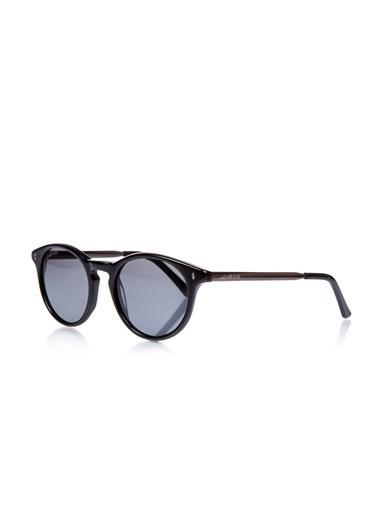 U.S. Polo Assn. Güneş Gözlüğü Renkli